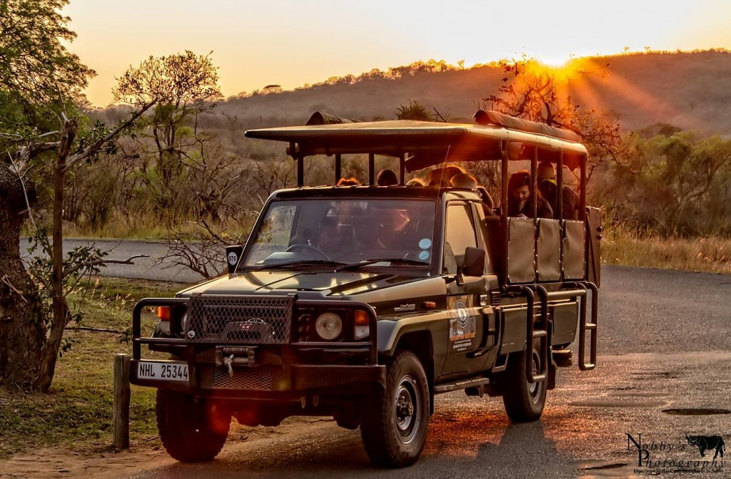 hluhluwe big 5 safari options