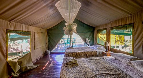 Mkuze 4Bed TwinTents